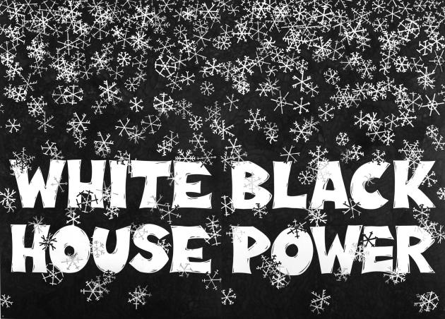 'White House Black Power...' by Aleksandra Mir
